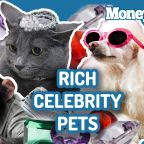 Karl Lagerfeld's cat Choupette could inherit millions. Here are other pets worth a fortune