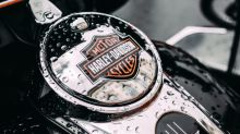 Harley-Davidson Lineup for 2020: What We Know