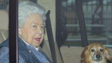 Heartbreak for the Queen as pet dorgi Vulcan dies
