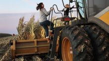 Trump vowed to help small farmers, but here's where the aid is really going