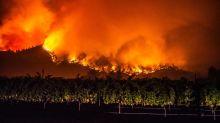 Vier Tote bei Waldbränden in Nordkalifornien