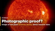 Detailed image of red giant confirms theory about massive stars
