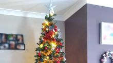 Christmas tree photo sparks huge debate: 'Are you serious?'