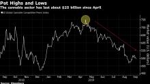 Tilray's Dubious Anniversary Marks 90% Stock Decline
