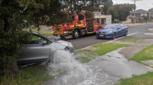 'Unsupervised' L-plater crashes into fire hydrant trying to park