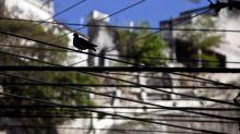Brazil Power Wizard Takes Center Stage in Eletrobras Shock