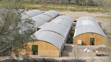 Navajo Nation moves to shut down hemp farms amid claims of marijuana growing
