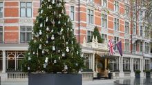 Damien Hirst's 'drugged' Christmas tree stirs up controversy