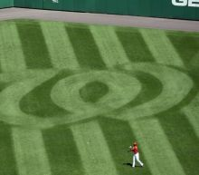 Nationals affiliate throws back-to-back no-hitters in doubleheader