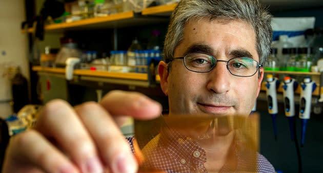 Un sencillo chip de 20 dólares capaz de detectar diabetes de tipo 1