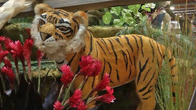 Rose Parade floats: Animals abound