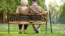 這3隻退休之選可以長伴終老