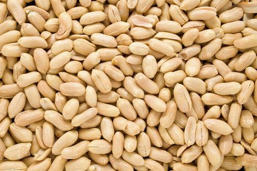 11 Year Old Banned From Flight Due To Peanut Allergy