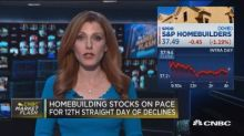 Homebuilding stocks on pace for 12th straight day of decl...