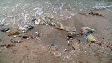 Interaktive Karte zeigt, wie wichtig der Kampf gegen Plastikmüll ist