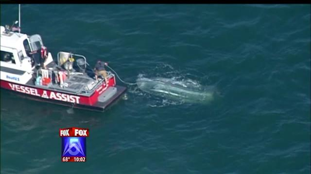 Family Rescued After Boat Capsizes On San Diego Bay