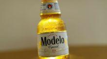 Constellation raises profit forecast after beer-driven quarter