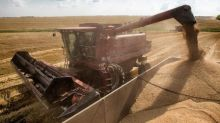 Global trade war to be a boon for Black Sea grain