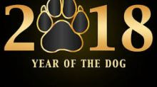 Year of the Dog Spells Good Times for Wall Street: 5 Picks