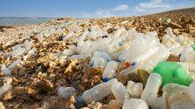"""La polución es tan grave que la Tierra se encuentra en la """"Edad del Plástico"""""""