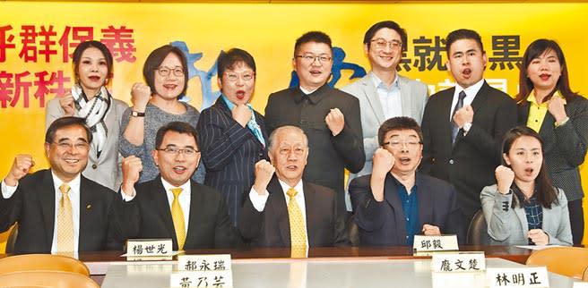歷經昨晚的內部會議後,新黨發表聲明表示不會散。圖為新黨公布2020不分區立委候選人名單。(本報資料照片)