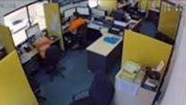 Confused Workers React to Queensland Earthquake