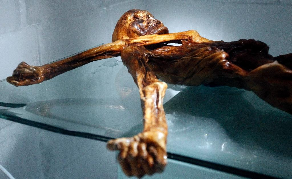 """Mummified in the ice, """"Oetzi"""", as he was later nicknamed, was a sensation, providing invaluable scientific insights that 25 years later show no sign of abating (AFP Photo/Andrea Solero)"""