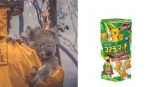 原來想救助澳洲火災而受害的無尾熊,最簡單方式就是多吃 Lotte 小熊餅乾!