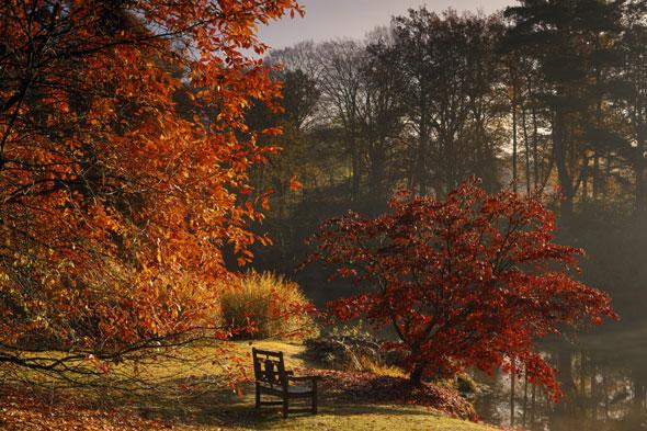 """<p> </p> <p class=""""p1""""> Explore over 120 acres of landscaped garden, follow winding paths to enchanting lakes, where even the water takes on a distinctly autumnal hue. The five linked lakes reflect the vivid autumn colours, with flaming ochre and scarlet painted by Japanese maples, swamp cypresses and birches.</p>"""