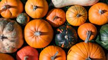 Here's what to do with the food waste from your pumpkin