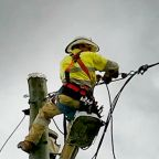 Emergency Workers Repair Power Lines Damaged by Cyclone Trevor