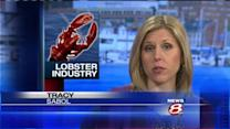 Carbon emissions hurting lobster industry