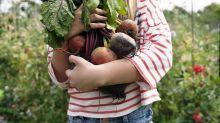 5 dolencias que mejoran tomando legumbres