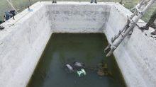 Parco Nazionale d'Abruzzo: trovati tre orsi annegati