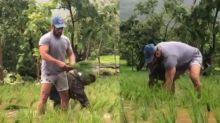 Salman Khan Plants Rice Saplings In Ankle-Deep Water; Iulia Vantur And Nephew Nirvaan Join Him