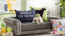 Wayfair Unleashes Archie & Oscar Exclusive Line of Furniture and Accessories for Pets