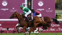 Le français Sottsass remporte le Prix de l'Arc de Triomphe, défaite d'Enable