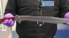 Man arrested after he was found carrying terrifying 15-inch machete on train