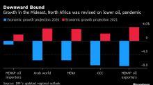 FMI empeora proyecciones para Medio Oriente por crudo, covid-19