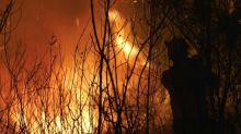 Portogallo in fiamme, violenti incendi nel centro del Paese
