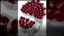 What's up Haute Joaillerie: Van Cleef & Arpels, Tiffany & Co. and Grand Seiko