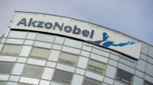 Akzo Nobel's second quarter profit surges despite car industry weakness