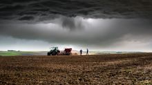 Farm Bankruptcies Soared 20% Amid Trump Trade War. It's The Highest Rate In 8 Years.