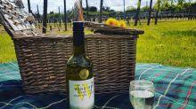 15 best English sparkling wines