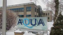 Former Exelon exec joins Aqua America's board