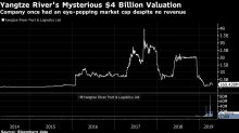 A ChineseFirm's PlungeCost Interactive Brokers Millions