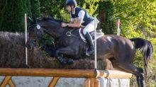 Équitation - Concours complet - Concours complet : Christopher Burton leader à Pau