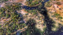 El Delta del Okavango a vista de pájaro