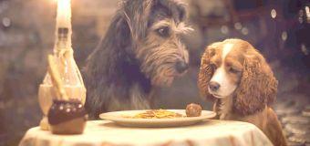 New 'Lady and the Tramp' recreates spaghetti scene