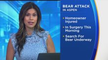 Bear Opens Front Door, Attacks Homeowner In Aspen